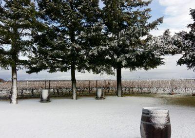Terraza-nevada-en-Finca-La-Emperatriz-01