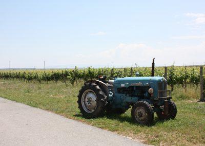 Tractor-antiguo-en-Finca-La-Emperatriz